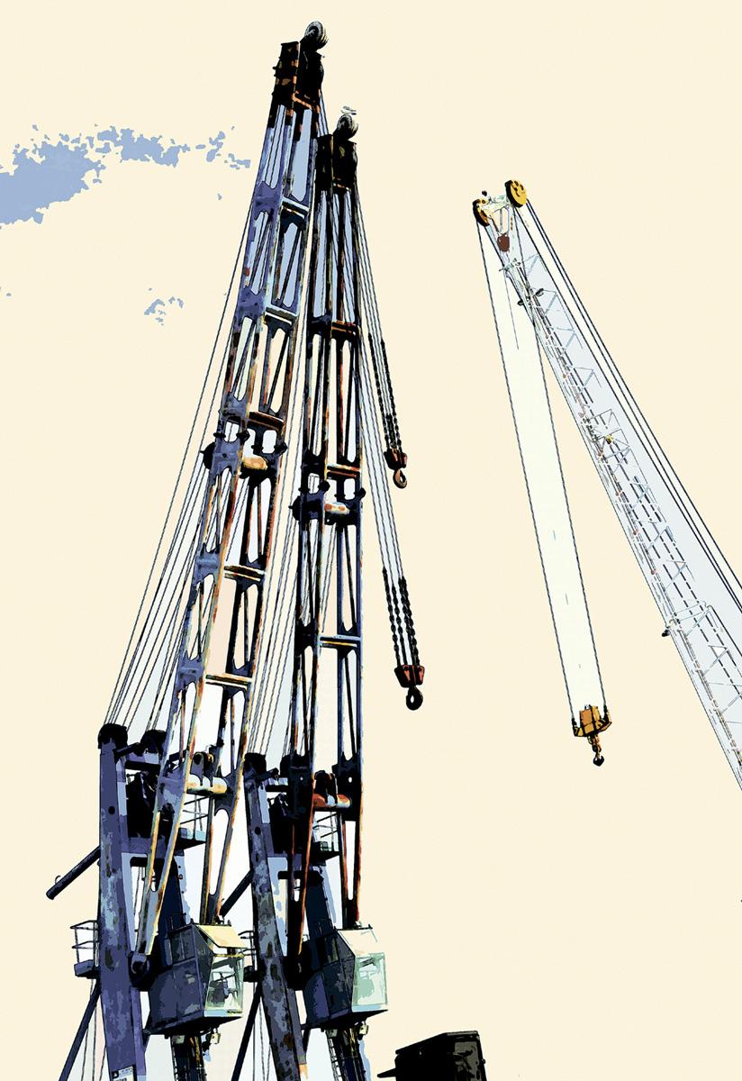 Dancing Cranes 009 – 028_I08-2.4