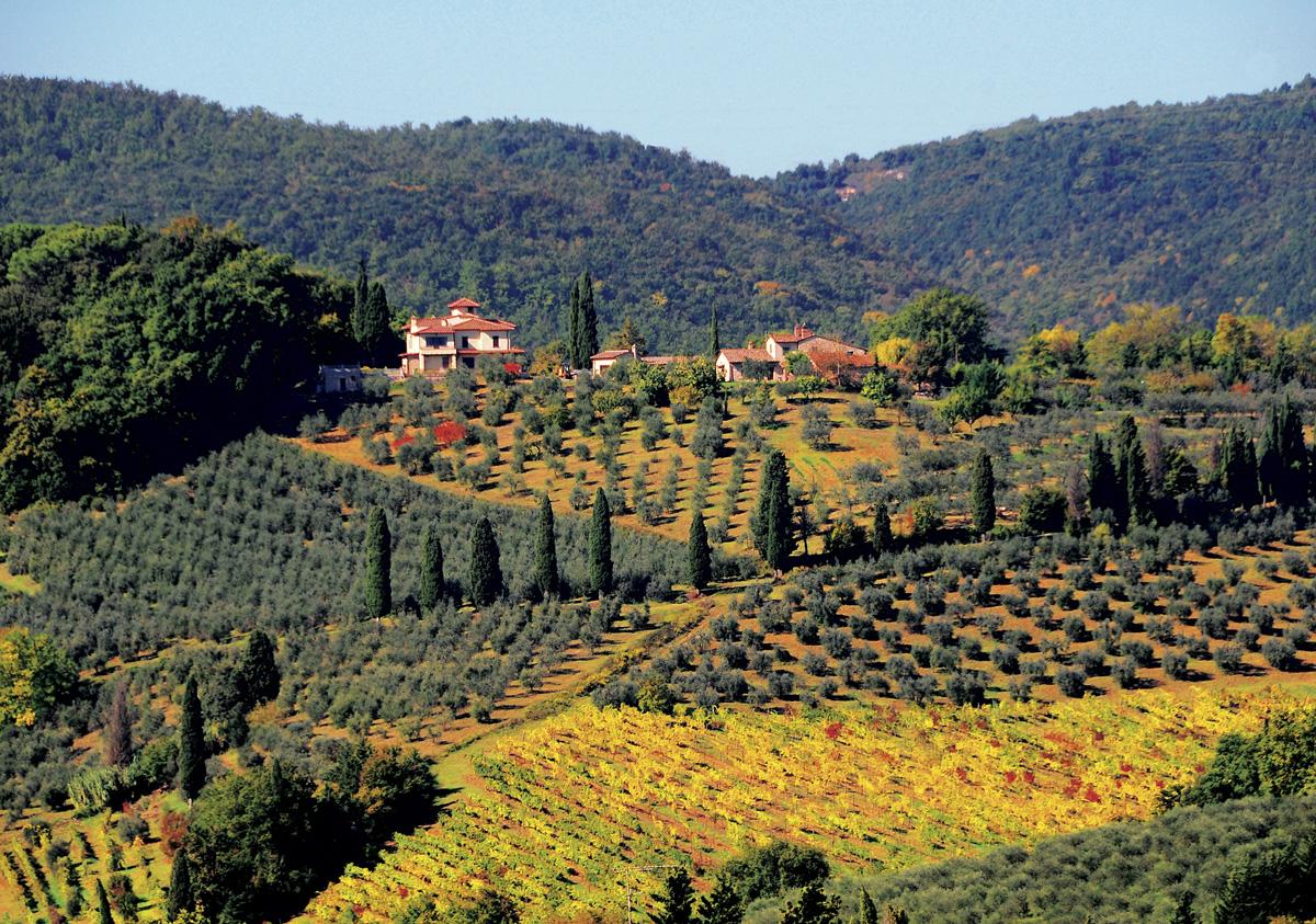 Toscana 023 – 053_I10.1-64