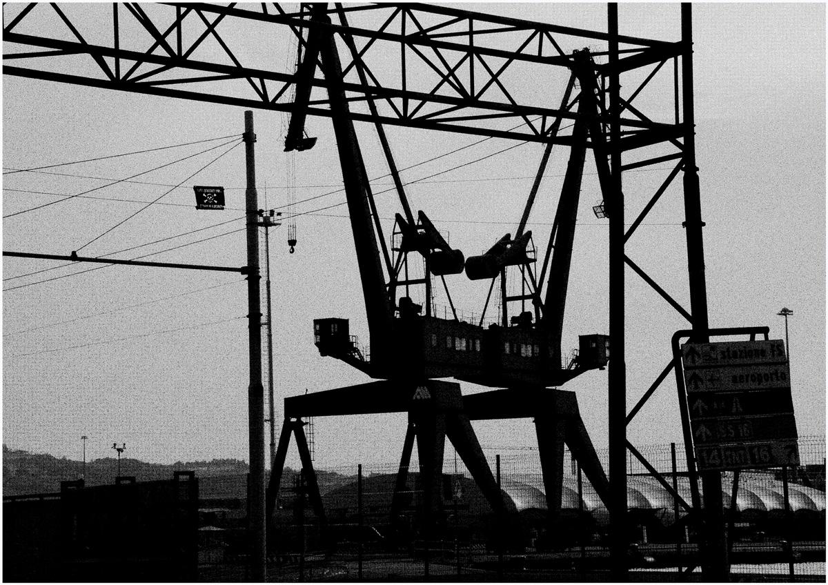 Dancing Cranes 029 – 088_I08-2.53