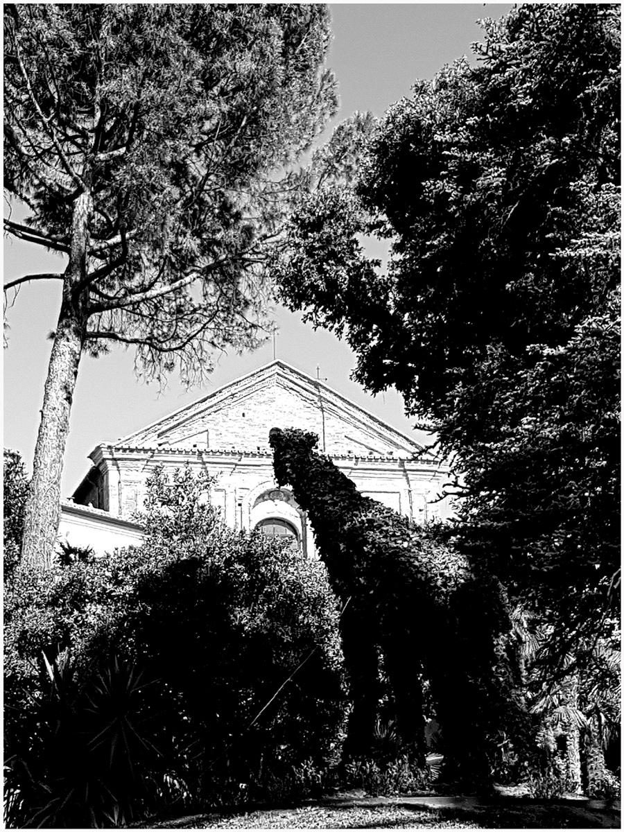 Trees 051 – 164.3_I17.5.67