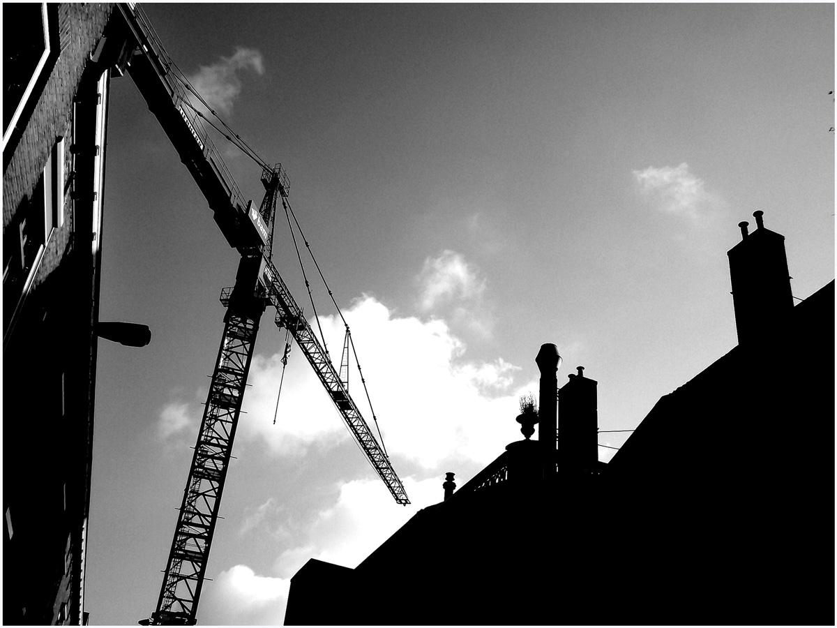 Dancing Cranes 058 – 170_H14.3.78