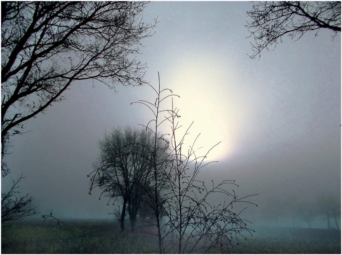 Dreams 087 – 214_M13.1-48