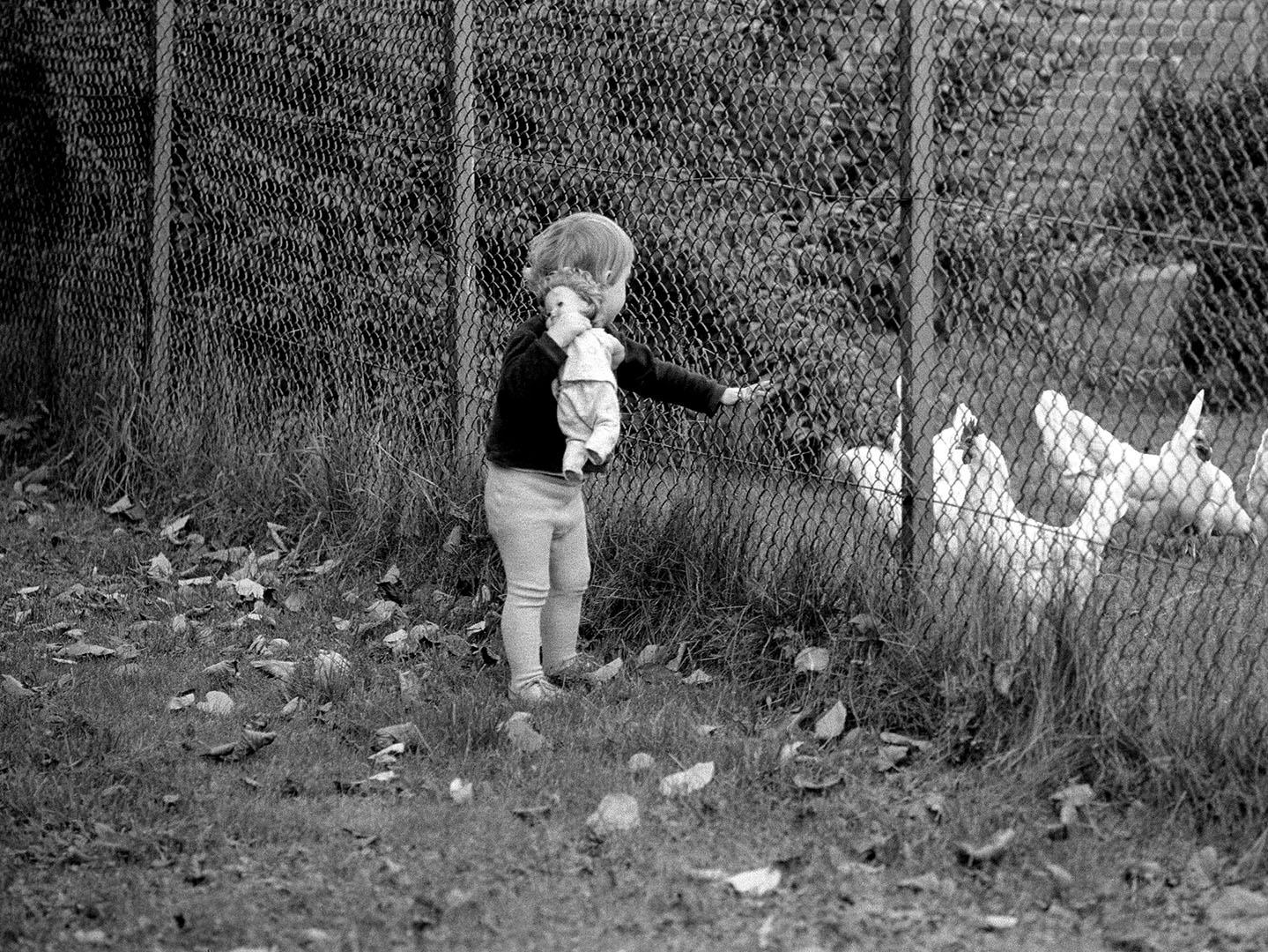 Children_009_P4.34