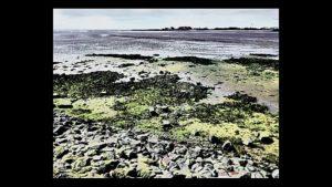 North Sea Water