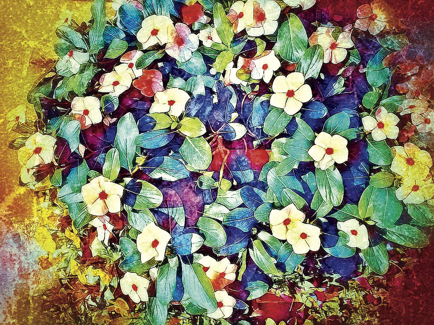 Flowers_013_I19.25.58