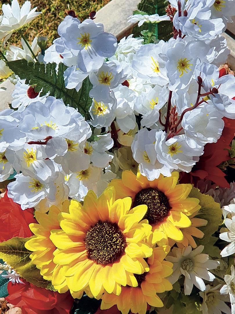 Flowers_016_Flowers_27