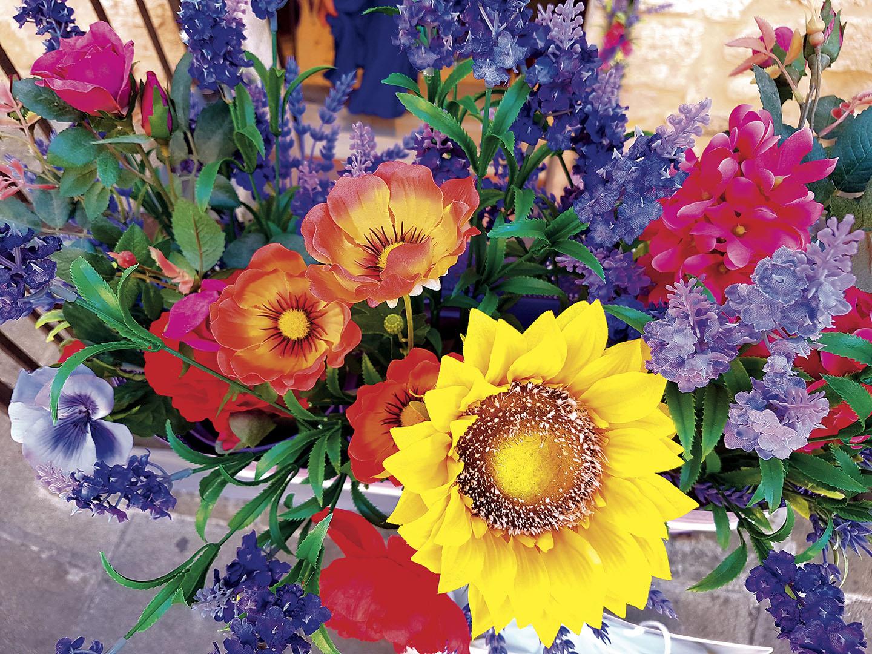 Flowers_019_I17.22.8