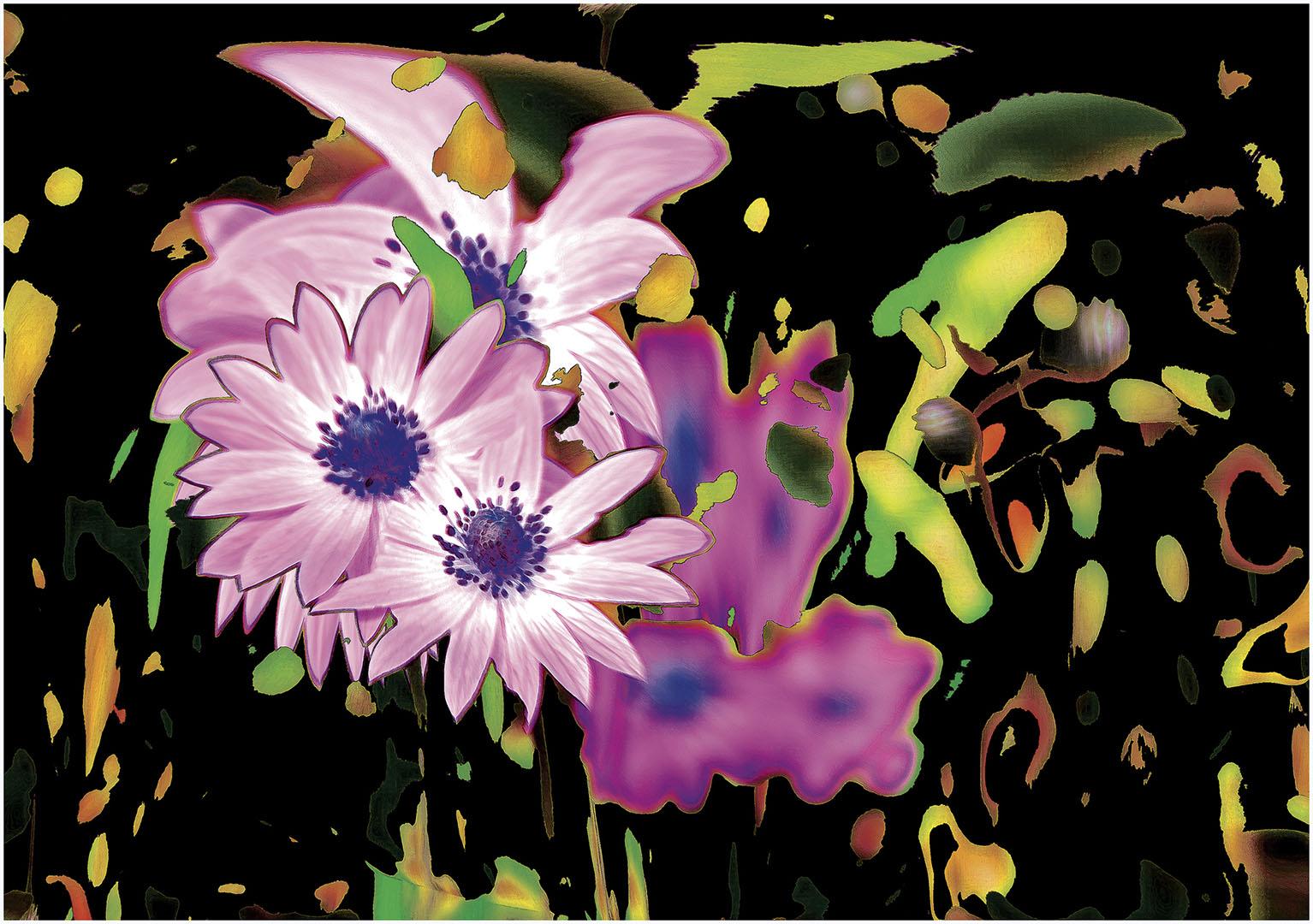 Flowers_159_I12.1-72
