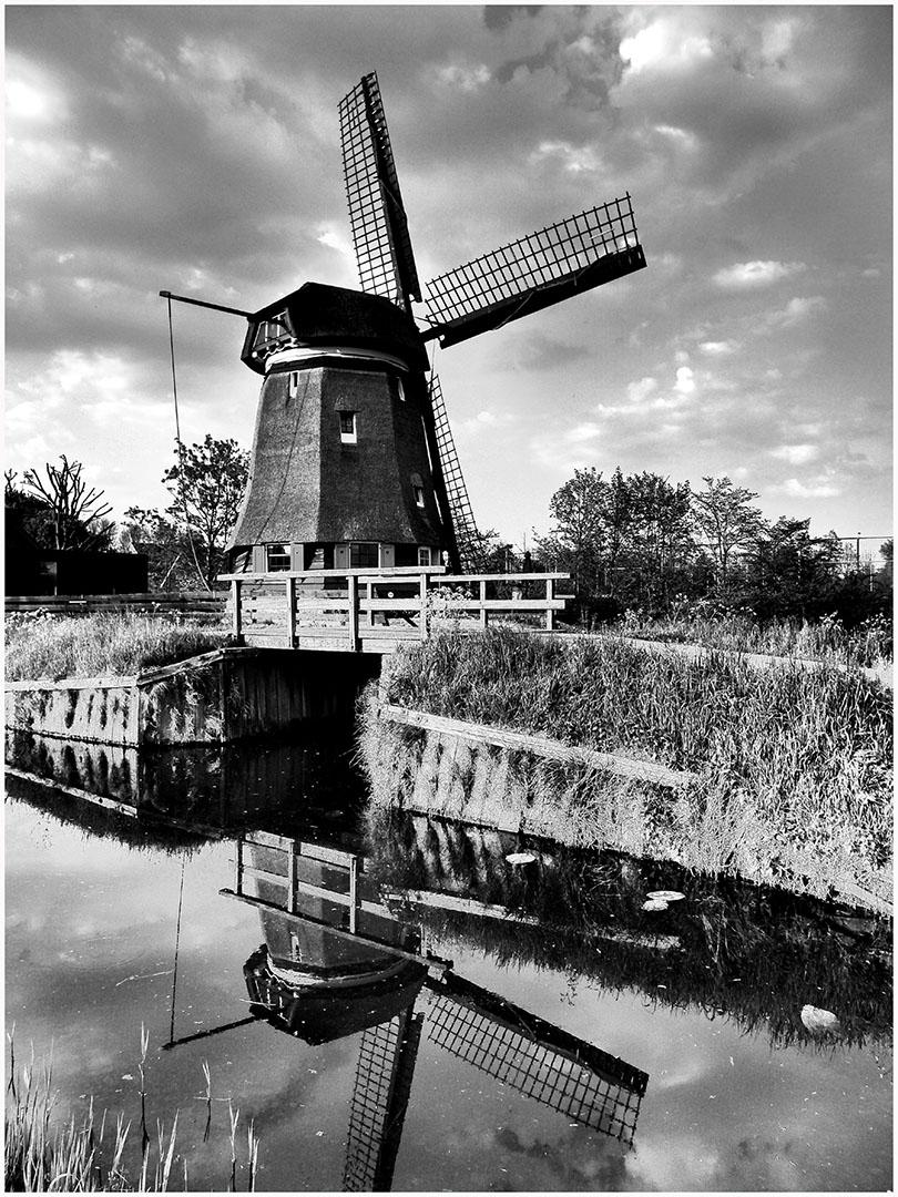 Holland_021_H16.4.6
