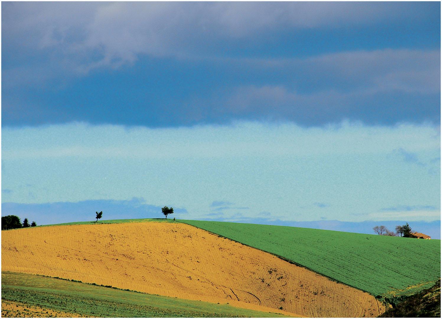 Landscapes_201_I12.1-67