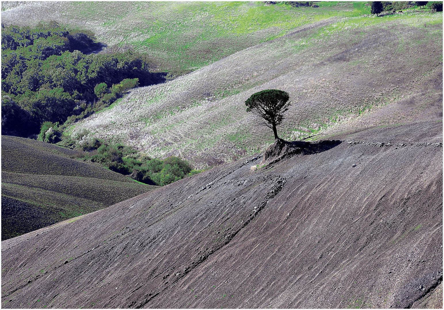 Landscapes_252_I10.1-34
