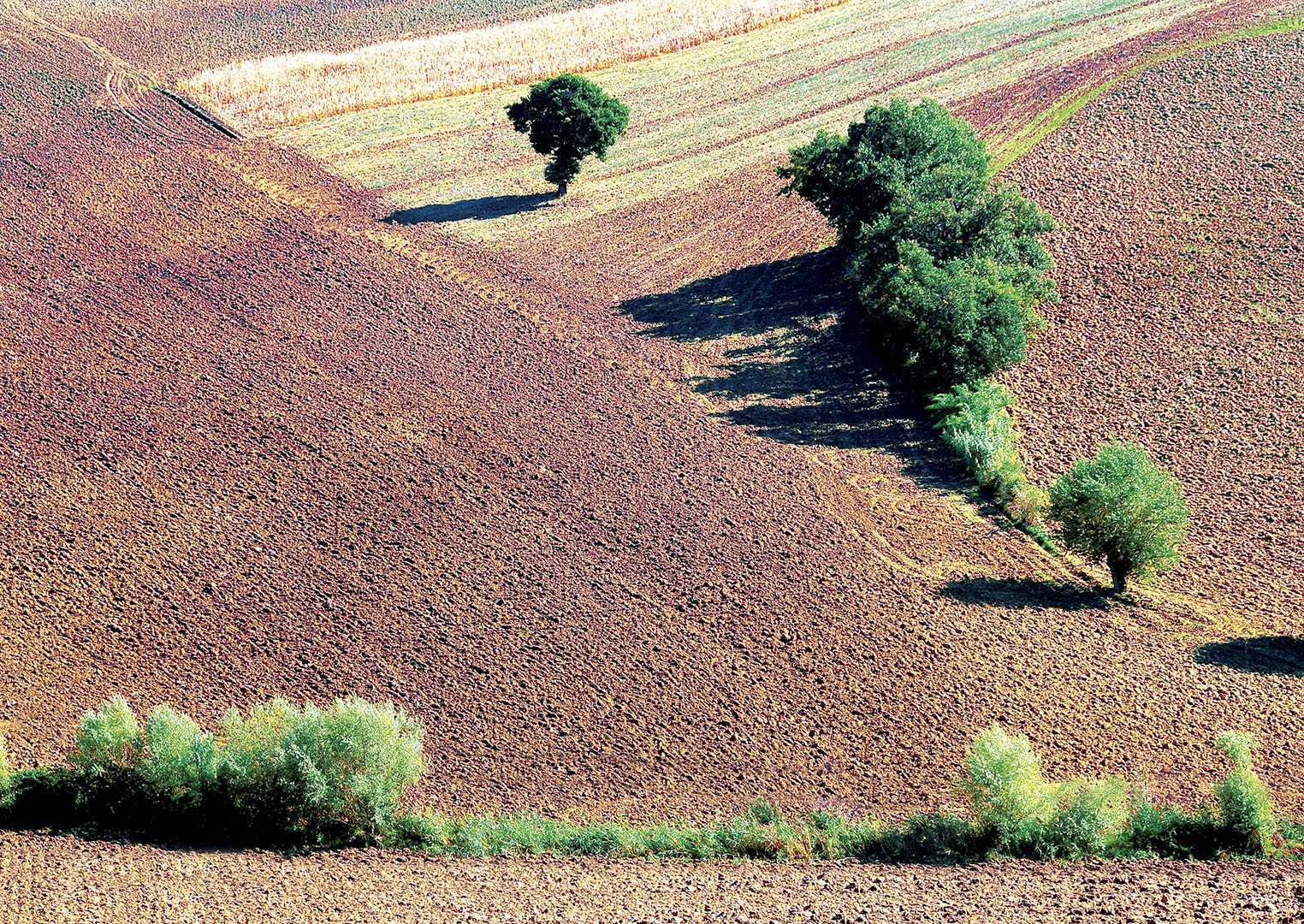 Landscapes_258_I08-8.43