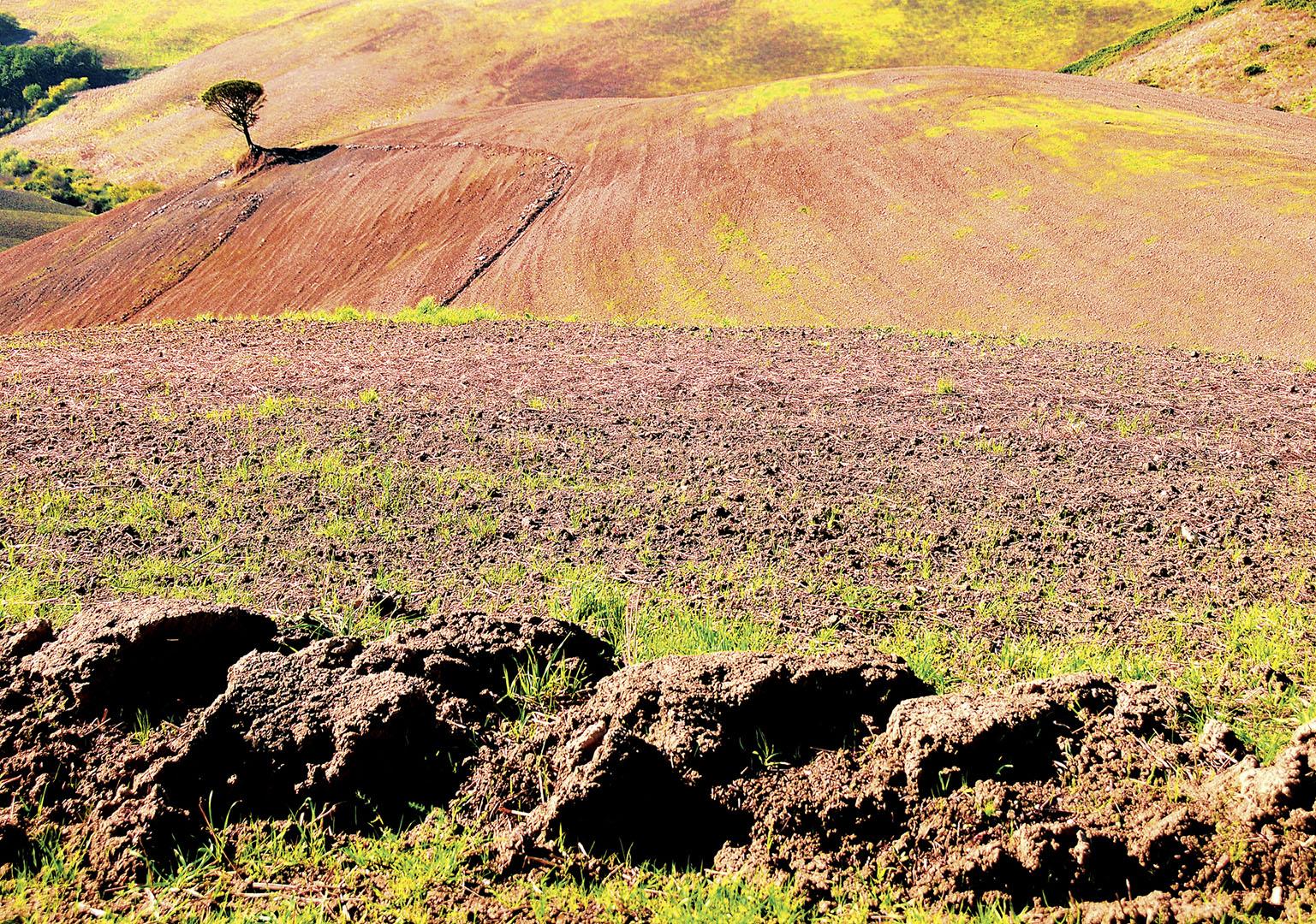 Landscapes_265_I10.1-39