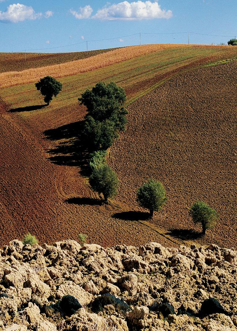 Landscapes_362_I08-8.46