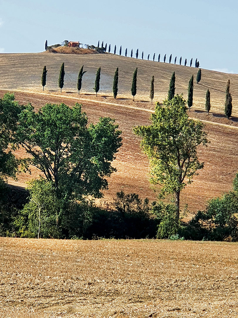 Landscapes_395.3_Landscapes_21