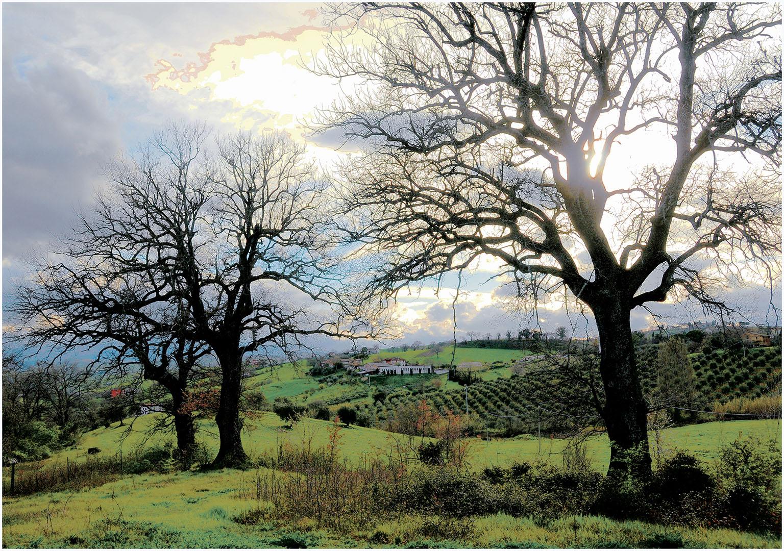 Landscapes_520_I12.1-81