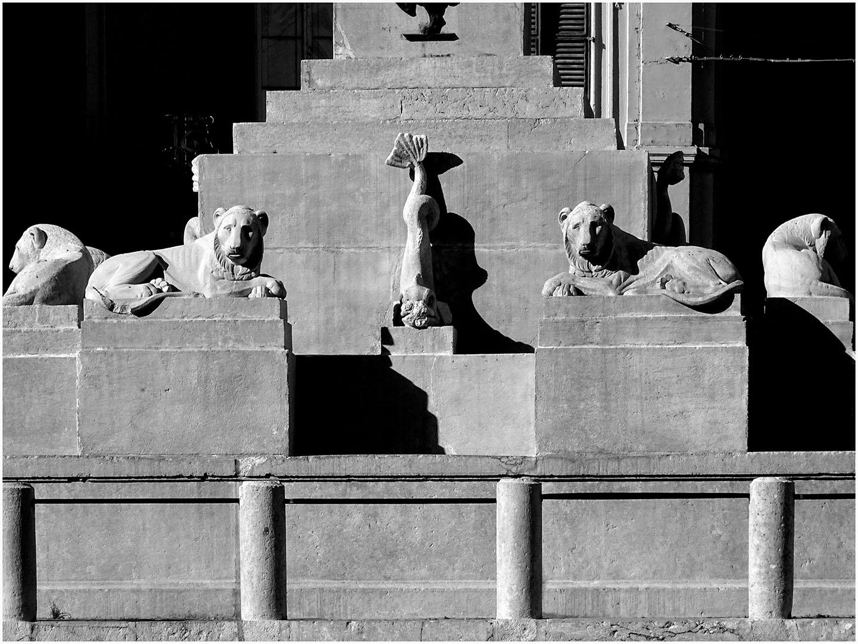 Le_Marche-Ancona_185_I17.7.26