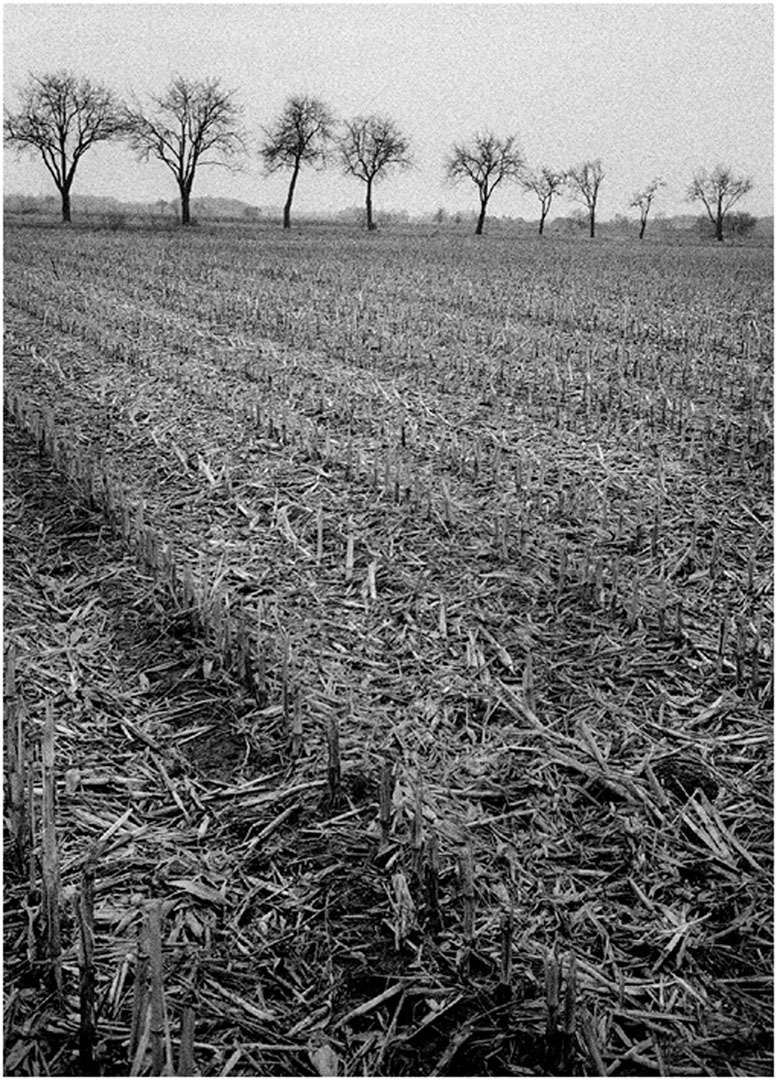 Muensterland_010_L5.79