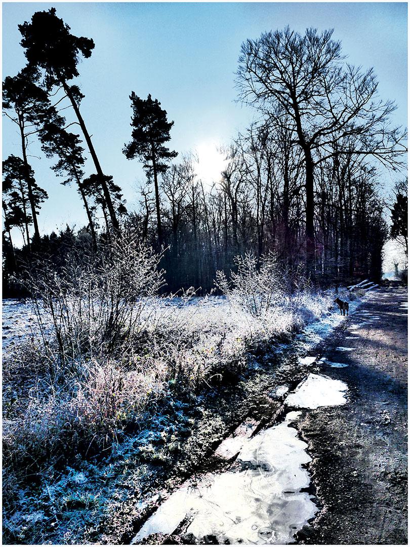 Muensterland_063_M16.1.29