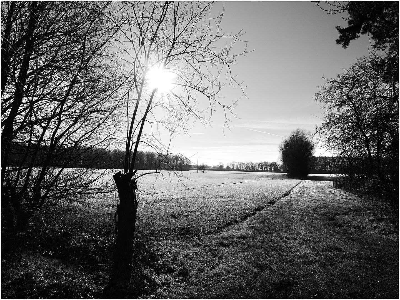 Muensterland_067_M16.1.45