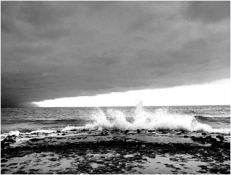 North_Sea_Water_081_L1.46