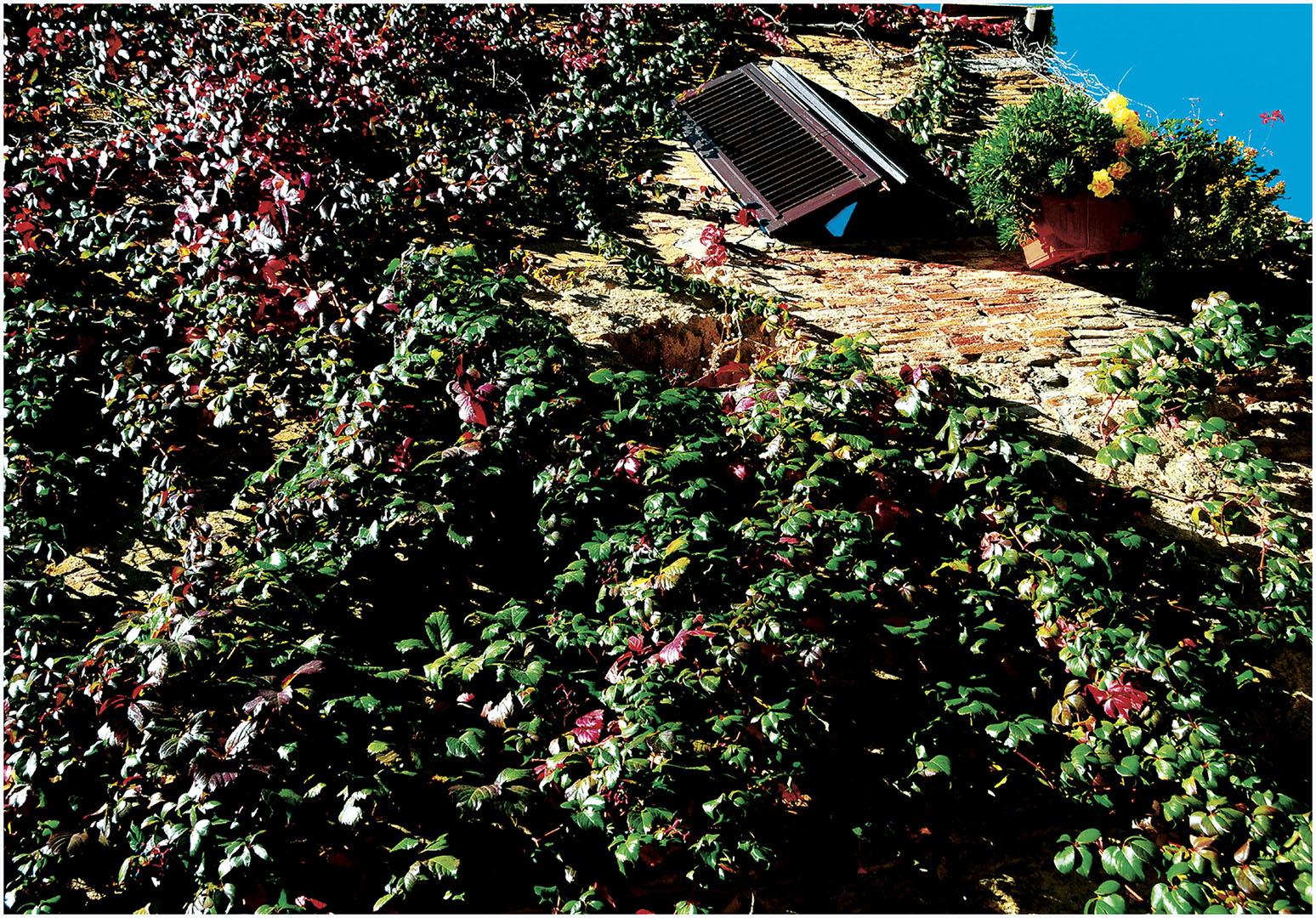 Toscana_061_I10.1-69