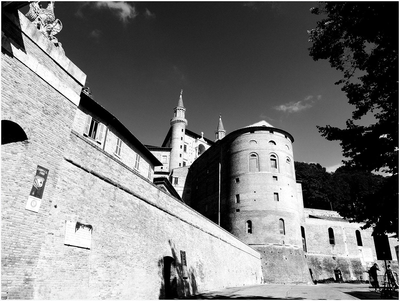 Urbino_048_I15.17.88